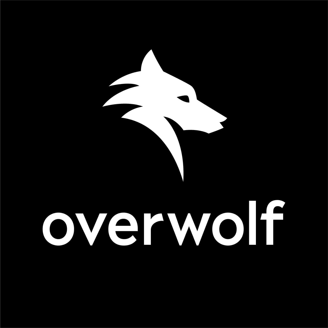 Overwolf Tech For Developers Who Love Gaming